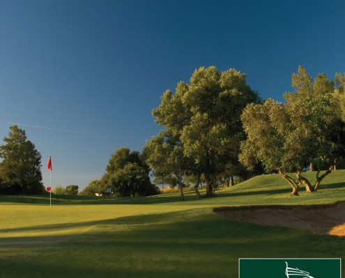Pestana Alto Golf