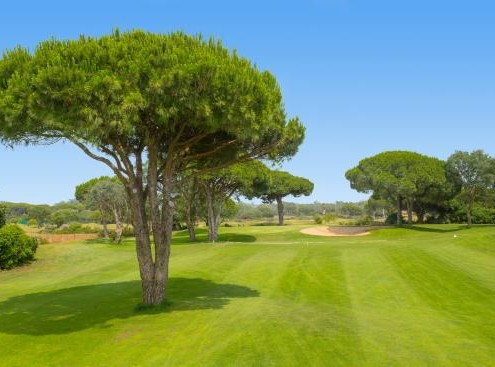 Novo Sancti Petri Golf Course
