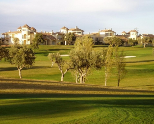 panoramica-golf-course