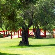 Campano Golf Course