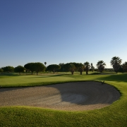 DOM PEDRO OLD COURSE